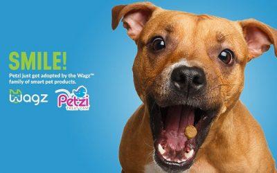 Wagz buys Petzila